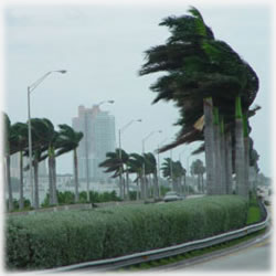 Hurricane Season and Preparing Finances