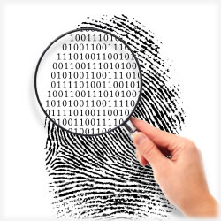 Life Lock vs. Other ID Protection Services